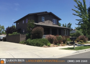 Sonoma city house painter